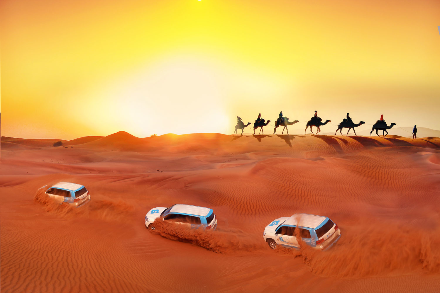 The Best of Dubai: Desert Safari, Camel Rides and More…