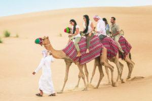 dubai-camel-safari