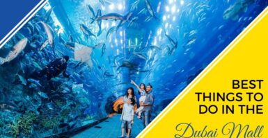 Best Things To Do In The Dubai Mall